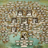 Sofer Family Tree